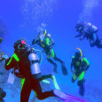 Jack shows you some of the reef and its critters