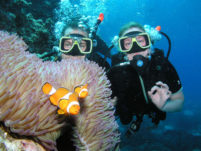 Prodive cairns padi advanced liveaboard open water course - Pro dive cairns ...