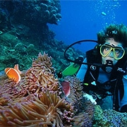 Cairns Diving Trips